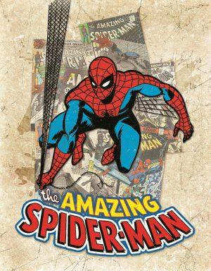 Amazing Spiderman (Cover Splash)