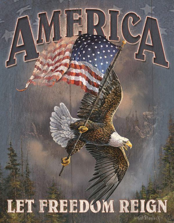 America Let Freedom Reign