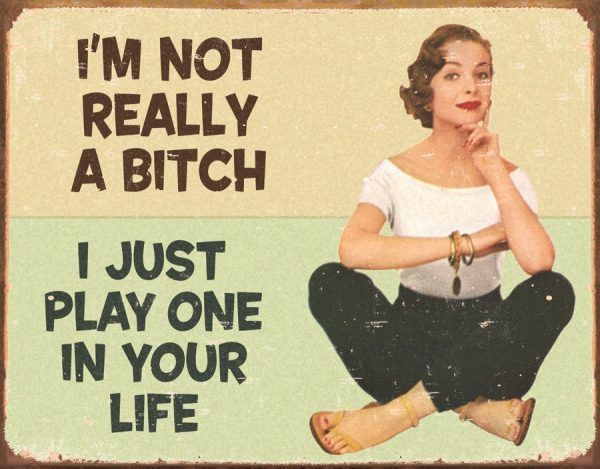 I'm Not Really A Bitch I just Play One
