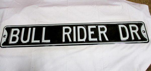 Bull Rider Dr