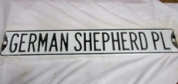 German Shepherd PL